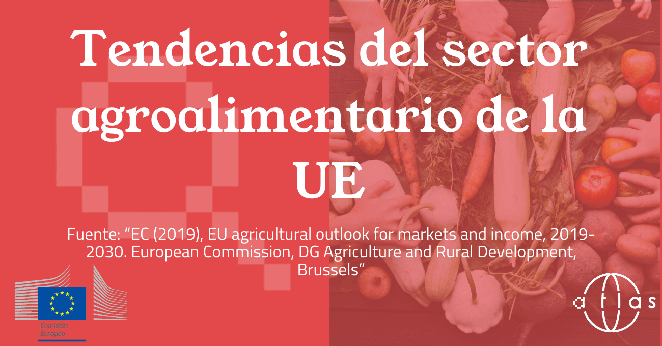 Marketing Internacional Cross Cultural Management Proyectos Europeos Chafea Promoción Agroalimentaria