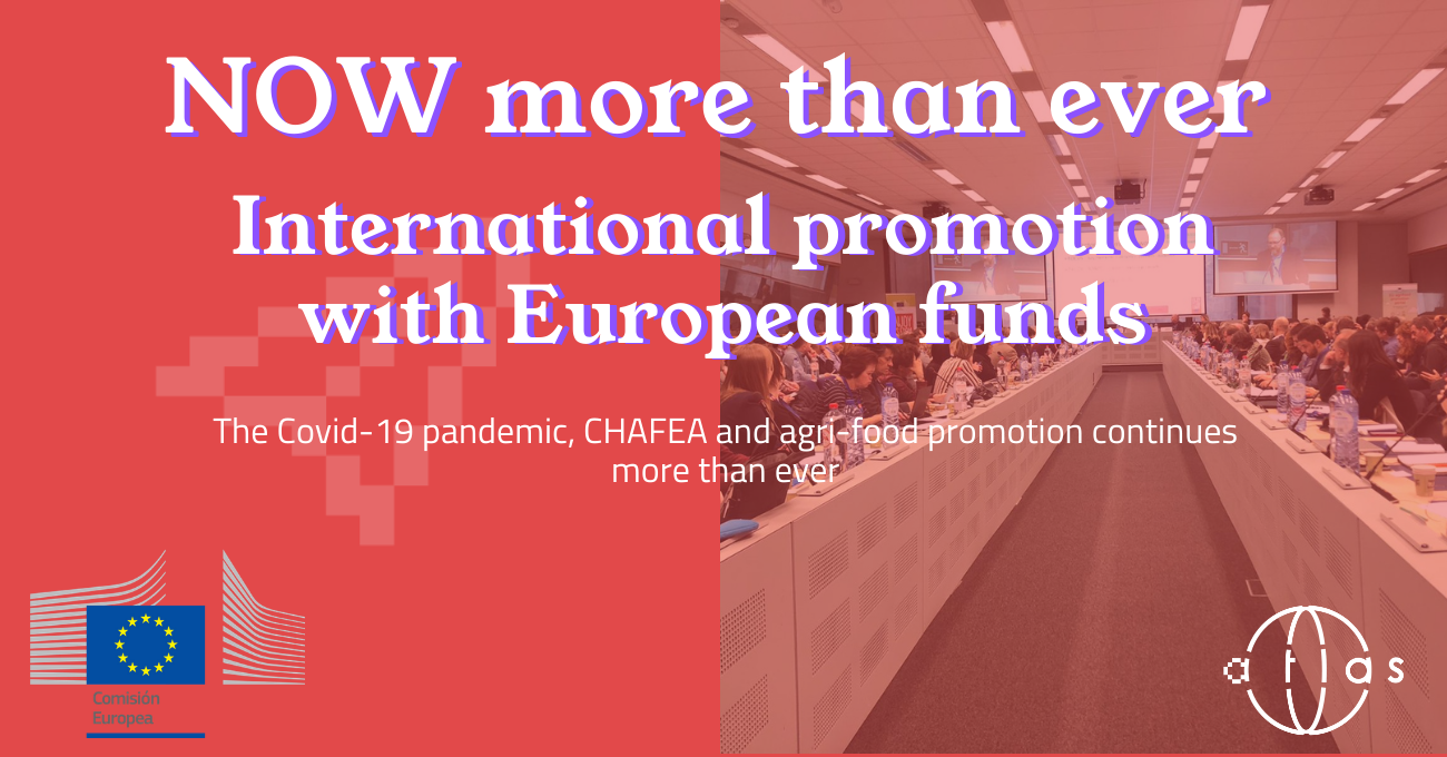 CHAFEA International Promotion European Union Programmes European Funds Covid Promotion Development Funds