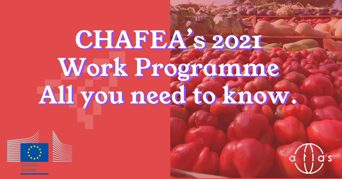CHAFEA's 2021 Work Programme